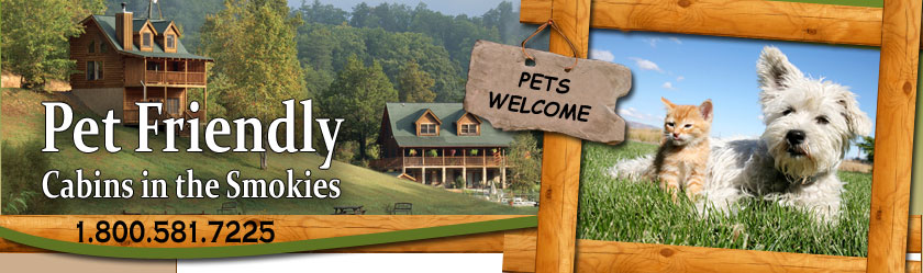 and featured tn in gatlinburg retreat wildflower a cabins htm temp forge friendly pet pigeon